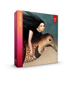 Adobe Stock для 1 користувача на 1 рік